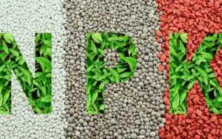 Фосфорные удобрения — когда вносить по сезонам, популярные марки