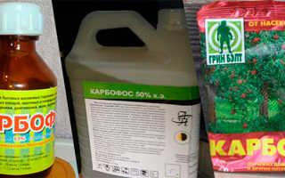 Карбофос для защиты культур от насекомых-вредителей