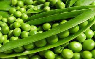 Горох овощной 'Альфа' — описание сорта, характеристики