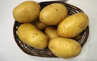 Картофель 'Шурминский 2' — описание сорта, характеристики