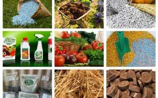 Типы удобрений и их особенности