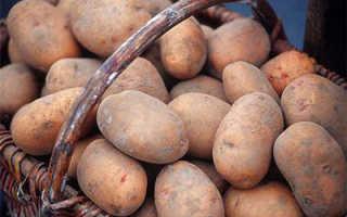 Cохранение картофеля с помощью М1