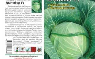 Капуста белокочанная 'Трансфер F1' — описание сорта, характеристики