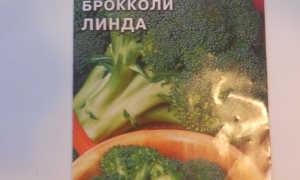 Капуста брокколи 'Линда' — описание сорта, характеристики