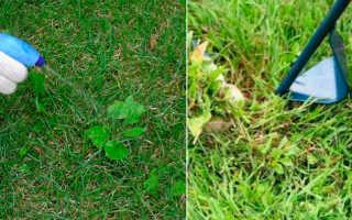 Обработка газона от сорняков