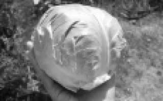 Капуста белокочанная 'Соло F1' — описание сорта, характеристики