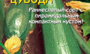 Кабачок 'Цубода' — описание сорта, характеристики