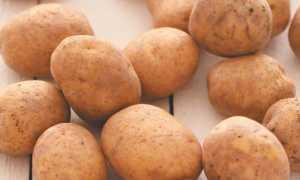 Картофель 'Зарево' — описание сорта, характеристики