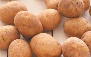Картофель 'Витал' — описание сорта, характеристики