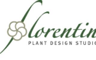 Растения под стиль интерьера: от кантри до хай-тек
