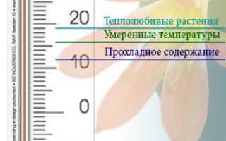 Организация температурного режима для растений
