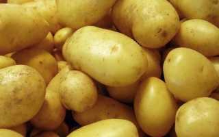 Картофель 'Фолва' — описание сорта, характеристики