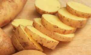 Картофель 'Лина' — описание сорта, характеристики