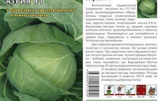 Капуста белокочанная 'Атрия F1' — описание сорта, характеристики