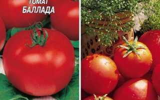 Томат 'Баллада' — описание сорта, характеристики