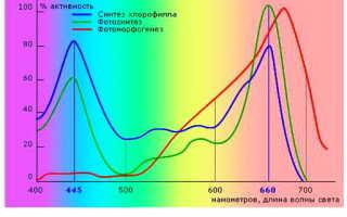 Применение ультрафиолетового фильтра в гидропонике
