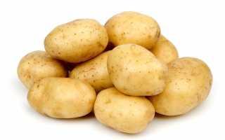 Картофель 'Гарт' — описание сорта, характеристики