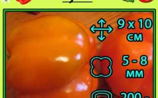 Перец сладкий 'Оранжевое чудо' — описание сорта, характеристики