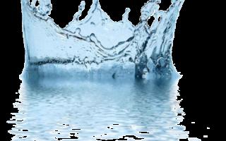 Смена питательного раствора для гидропоники