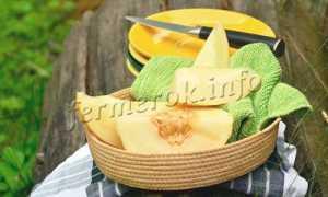 Дыня 'Лимонно-желтая' — описание сорта, характеристики