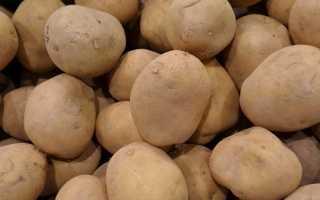 Картофель 'Бронницкий' — описание сорта, характеристики
