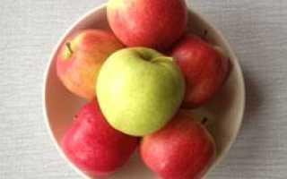 Яблоня 'Налив розовый' — описание сорта, характеристики