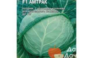 Капуста белокочанная 'Амтрак F1' — описание сорта, характеристики