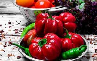 Перец сладкий 'Рубиновый' — описание сорта, характеристики