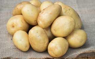 Картофель 'Зилэ' — описание сорта, характеристики